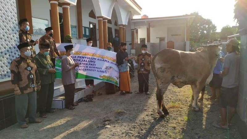 Pokjaluh Pati Serahkan Hewan Kurban ke dua desa di wilayah Kab. Pati.
